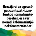 dvit_1