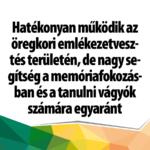 ginko_1
