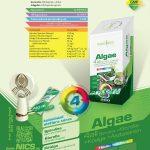 nics_18_MTP_Algae_4_All_HU