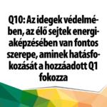 q10_1